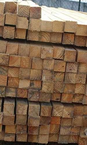 Pontaletes de Pinus